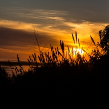 Sundown Portugal Robinson-2